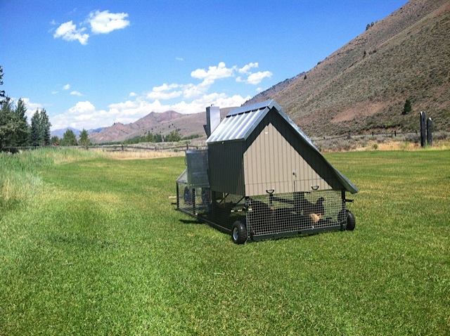 Front Yard Coop - Eco Friendly Mobile Chicken Coop